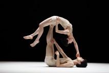 トヨタ コレオグラフィーアワード トーク & ショーイングToyota Choreography Award Talk & Showing