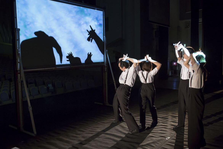 Hand Shadows ANIMARE Shadow Play Theatre KAKASHIZA   TPAM2019