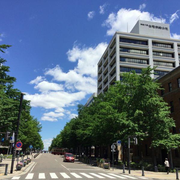 Nihon-Odori Street